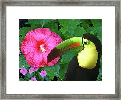 Morning In The Garden Framed Print by Elorian Landers