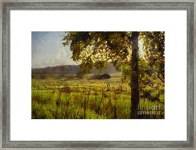 Morning In The Shade Framed Print by Digital Brush