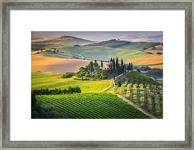 Morning In Tuscany Framed Print by Stefano Termanini