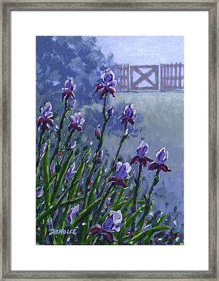 Morning Iris Framed Print by Richard De Wolfe