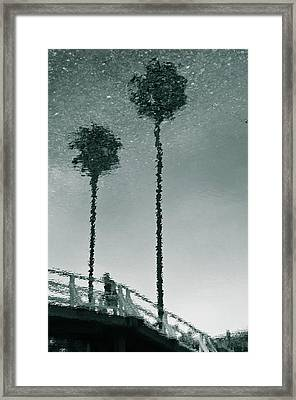 Framed Print featuring the photograph Morning by Kevin Bergen