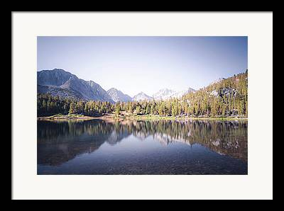 Trees Reflecting In Creek Framed Prints