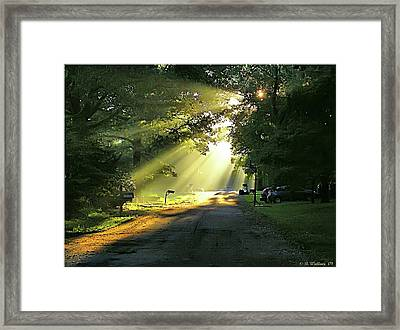 Framed Print featuring the photograph Morning Light by Brian Wallace
