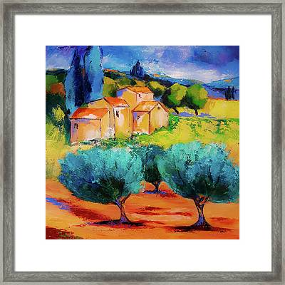 Morning Light By Elise Palmigiani Framed Print by Elise Palmigiani