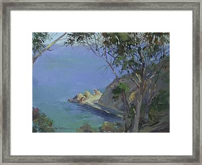 Morning Light Catalina Framed Print