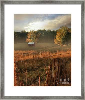 Morning Light Framed Print by Lori Deiter