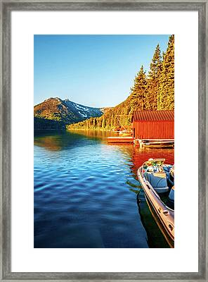 Morning Light Framed Print by Maria Coulson