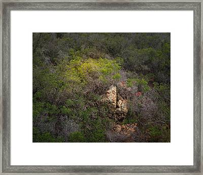 Morning Light On A Hillside Framed Print by Joseph Smith