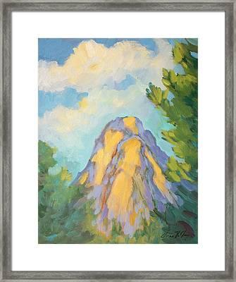 Morning Light On Lily Rock Framed Print