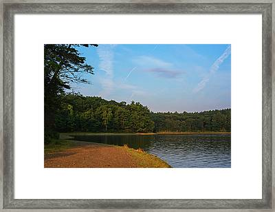 Morning Light On Walden Pond Concord Ma Framed Print