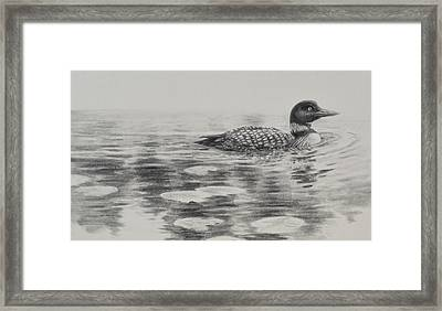 Morning Loon Framed Print by Jim Young