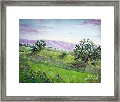 Morning Lupines Framed Print