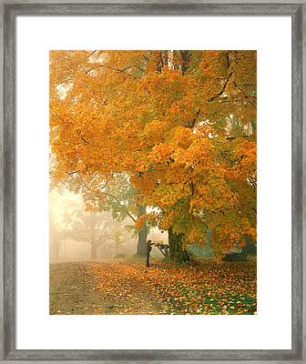 Morning Mail Cambridge Vermont Framed Print by George Robinson