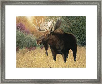 Morning Majesty Framed Print
