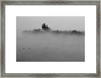 Morning Mist At Wetland Of Harike Framed Print