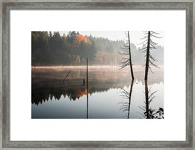 Morning Mist On A Quiet Lake Framed Print