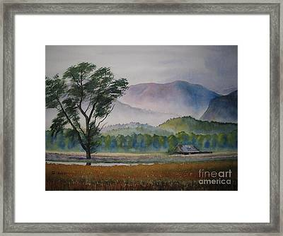 Morning Mist Framed Print by Shirley Braithwaite Hunt