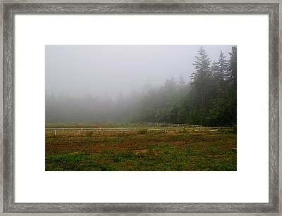 Framed Print featuring the photograph Morning Mist Solitude by Tikvah's Hope