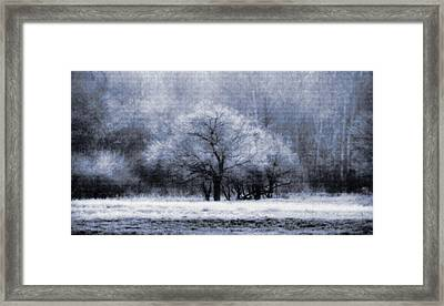 Morning Mood Framed Print by Mimulux patricia no No