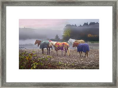 Morning Mudders Framed Print