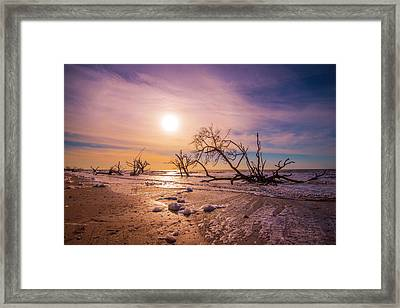 Framed Print featuring the photograph Morning On Boneyard Beach by Steven Ainsworth