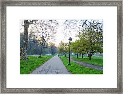 Morning On Kelly Drive In The Spring Framed Print