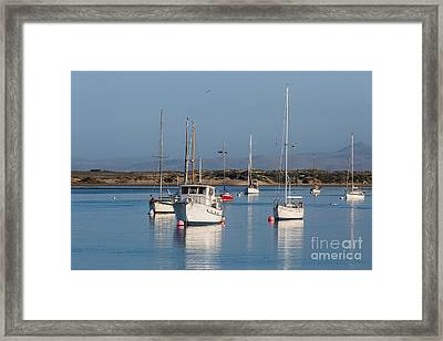 Morning On Morro Bay B3984 Framed Print