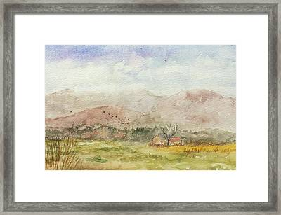 Morning On The Equinox Framed Print by Rachel Barlow