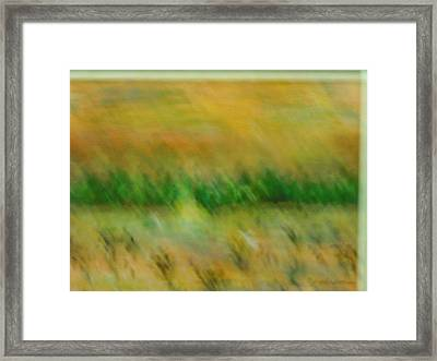Morning On The Lake With Whooping Cranes Framed Print by BJ Abrams