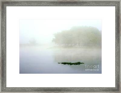 Morning On The Parana Framed Print