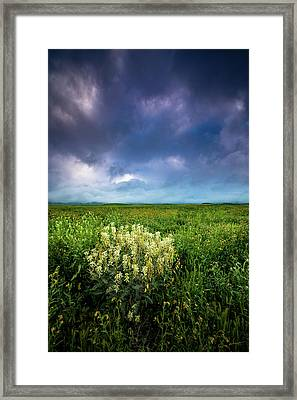 Morning On The Plain Framed Print by Dan Holmes