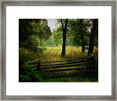 Morning Pasture Framed Print by Robert Clayton