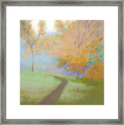 Morning Path 2 Framed Print by Bruce Richardson
