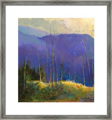 Morning Practices Framed Print by Dale  Witherow