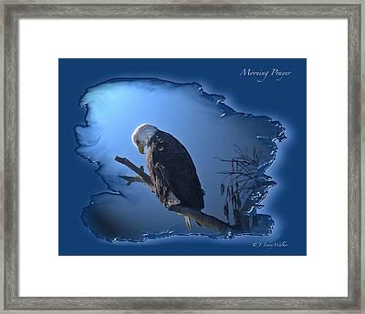 Morning Prayer Framed Print by J Larry Walker