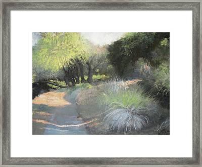 Morning Rays II Framed Print by Anita Stoll