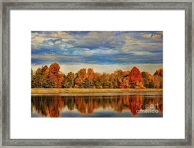 Morning Reflections Framed Print by Darren Fisher