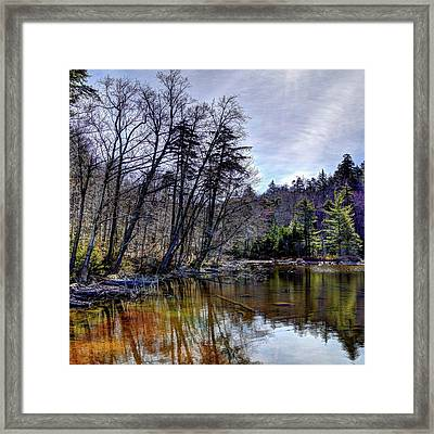 Morning Reflections Framed Print by David Patterson