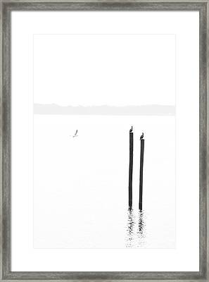 Morning Reflections II Framed Print by Chris Moore