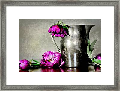 Morning Rise Framed Print by Diana Angstadt