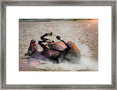 Morning Roll Framed Print
