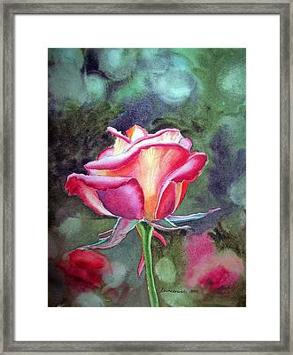 Morning Rose Framed Print by Irina Sztukowski