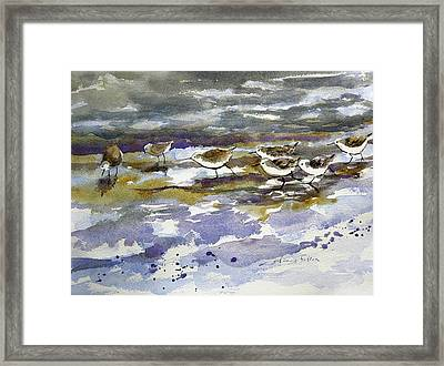 Morning Sandpipers At The Beach Framed Print by Julianne Felton