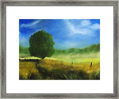 Morning Shade Framed Print