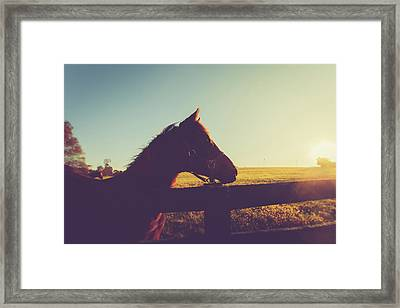 Framed Print featuring the photograph Morning  by Shane Holsclaw