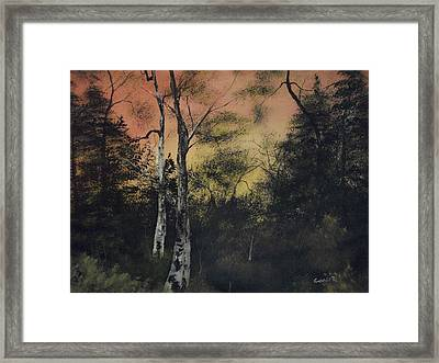 Morning Framed Print by Shawn Cooper