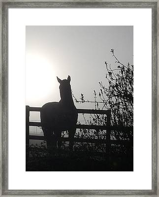 Framed Print featuring the photograph Morning Silhouette #1 by Deb Martin-Webster