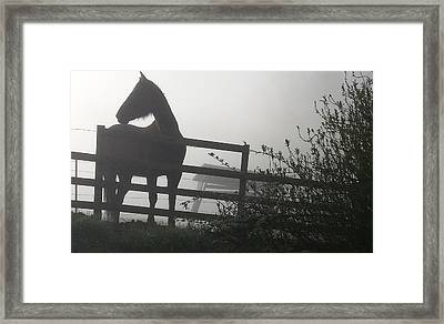 Framed Print featuring the photograph Morning Silhouette #2 by Deb Martin-Webster