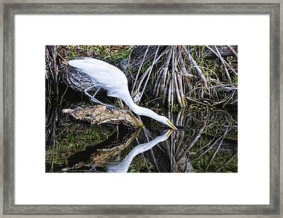 Morning Sip Framed Print