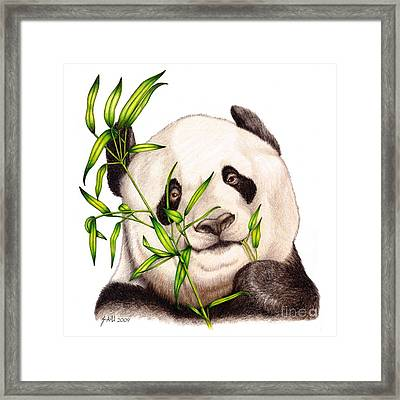 Morning Snack Framed Print